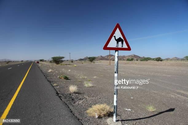Roadsign camels crossing