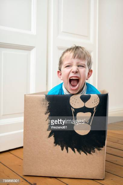 Roaring boy inside a cardboard box painted with a lion