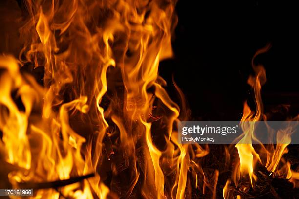 Roaring Fire Against Black Night Background Horizontal