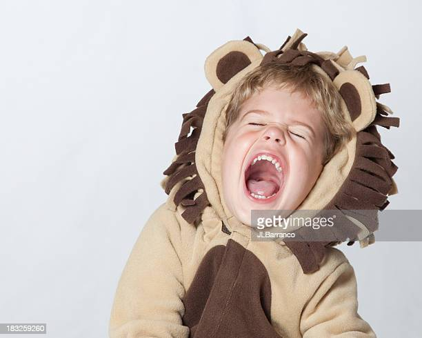 roaring laughing lion - lion roar stock pictures, royalty-free photos & images