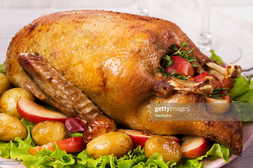 Roast duck with potato, apples, lettuce, thyme and rosemary : Stock Photo