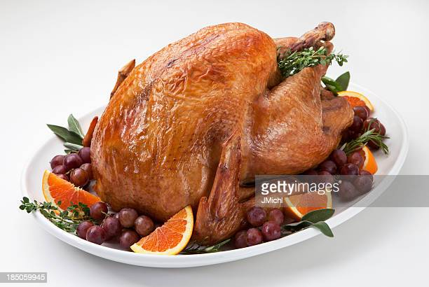 roast turkey and trimmings on a light background. - turkey bird stock photos and pictures
