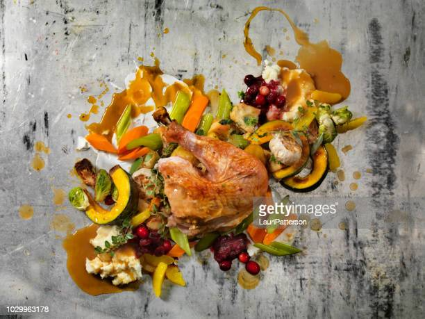 roast turkey dinner - gravy stock photos and pictures