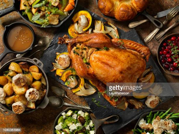 roast turkey dinner - turkey bird stock photos and pictures
