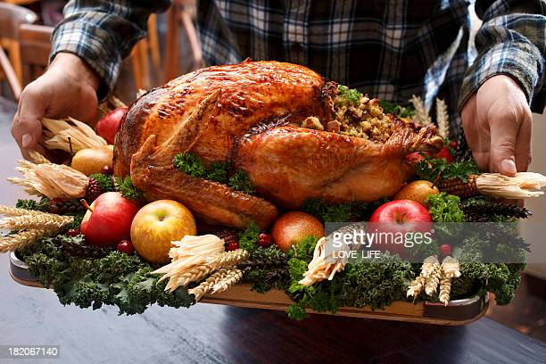 roast turkey dinner straight out of oven - stuffing stock photos and pictures