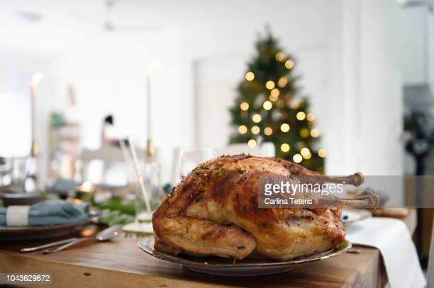 roast turkey on a beautiful christmas table - turkey bird stock photos and pictures