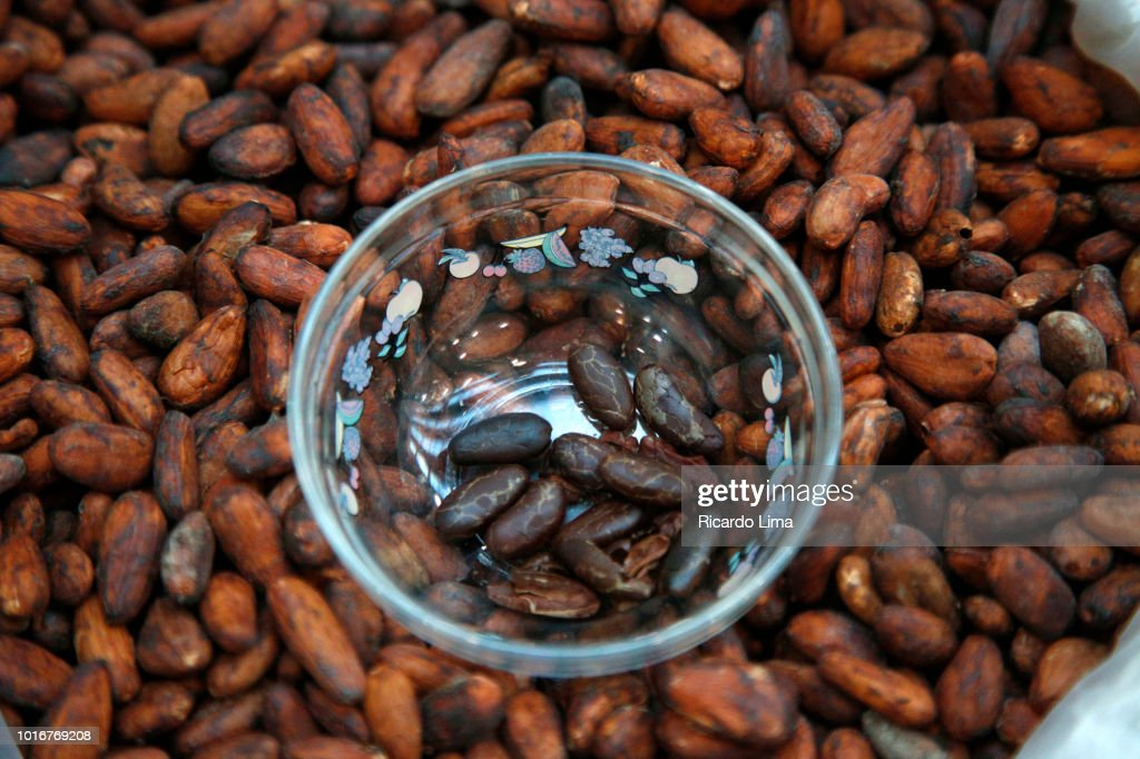 Roasted And Raw Cocoa Seeds Exposed In A Fair In Belem, Para State, Brazil : Stock Photo