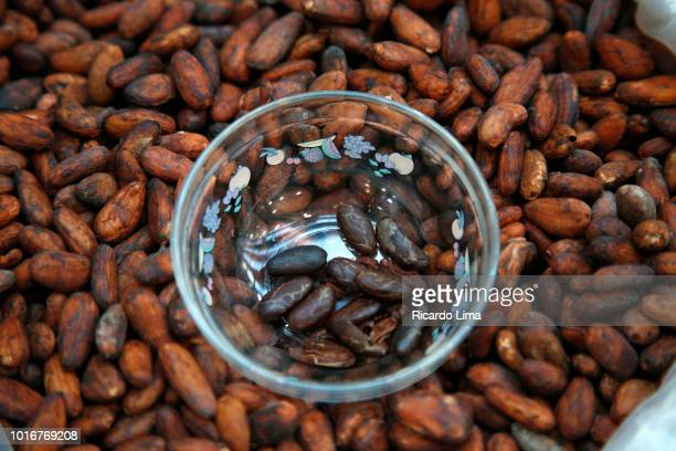 Roasted And Raw Cocoa Seeds Exposed In A Fair In Belem, Para State, Brazil