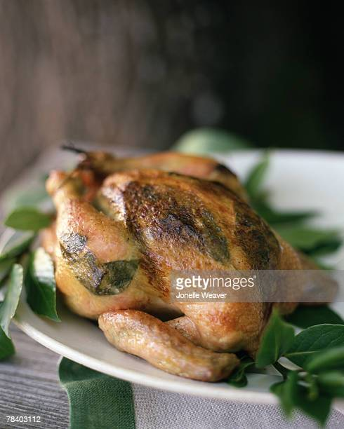 roasted chicken - lemon leaf stock photos and pictures
