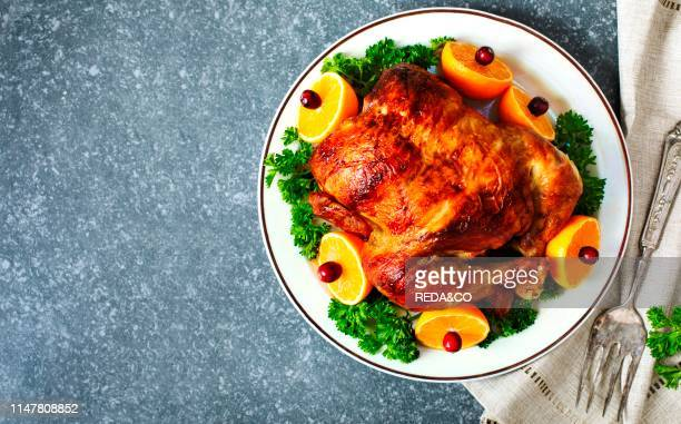 Roasted chicken served with citrus and cranberry on plate top view copy space