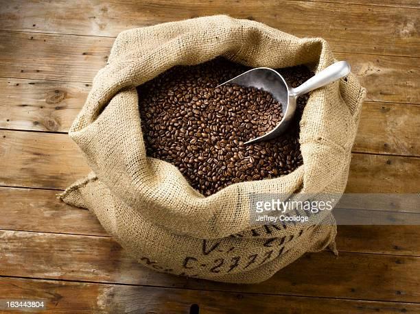 Roasted Coffee Beans in Burlap Bag