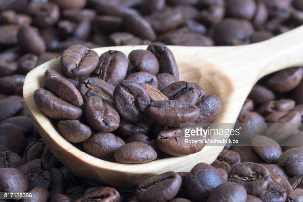 Roasted coffee beans served in handcrafted wooden rustic spoon