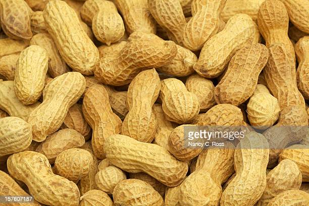 roasted peanuts, in shell, background, heathy eating, food, vegetable - peanuts stockfoto's en -beelden