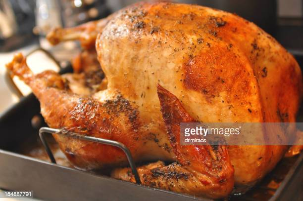 roasted turkey - roast turkey stock pictures, royalty-free photos & images