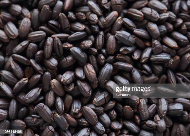 roasted unpolished rice,close up - savory food stock pictures, royalty-free photos & images