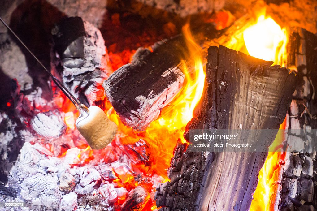 Roasting Marshmallow Over Campfire Stock Photo