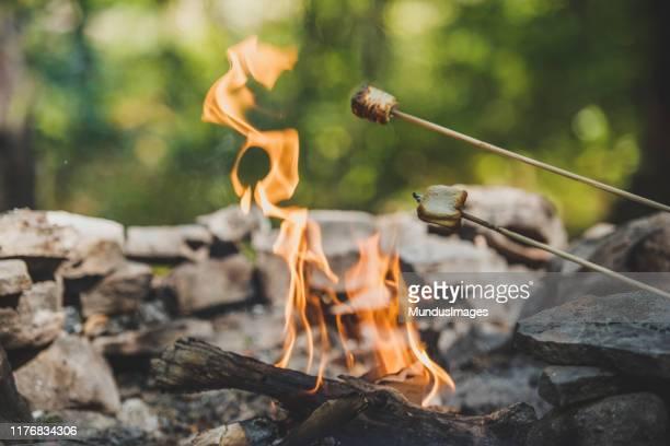 キャンプの火の上にマシュマロを焼く。 - キャンプファイヤー ストックフォトと画像
