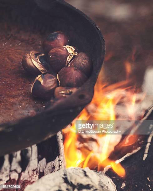 Roasting on an open fire