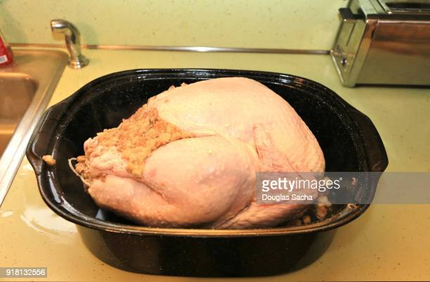 Roasting pan with a frozen turkey for cooking