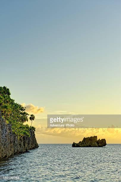 roatan honduras coral reef - honduras stock pictures, royalty-free photos & images