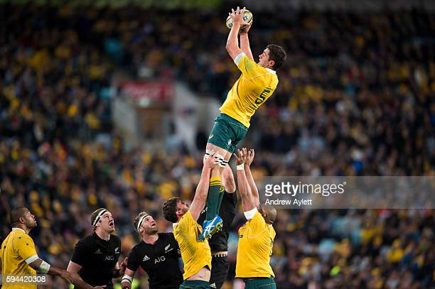 Rob Simmons of the Wallabies takes the lineout ball during The Rugby Championship Bledisloe Cup match between the Australian Wallabies and the New...