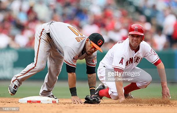 Robert Andino of the Baltimore Orioles and Peter Bourjos of the Los Angeles Angels of Anaheim look to first base for the second out of the double...