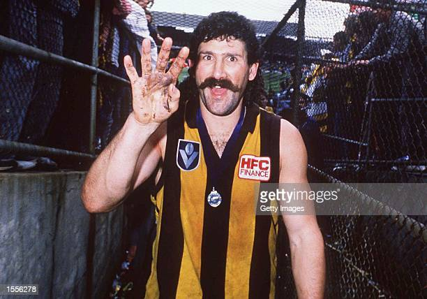 Robert Dipierdomenico of Hawthorn celebrates his win in the VFL Grand Final match between Hawthorn and Melbourne played at the Melbourne Cricket...