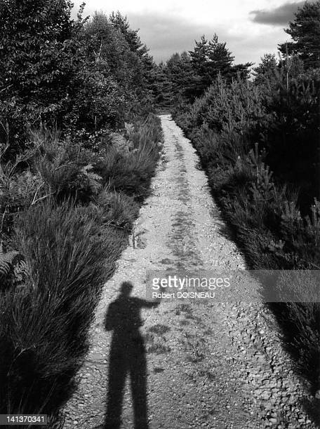Robert Doisneau's selfportrait in summer towards Arches in Coreze France in 1955