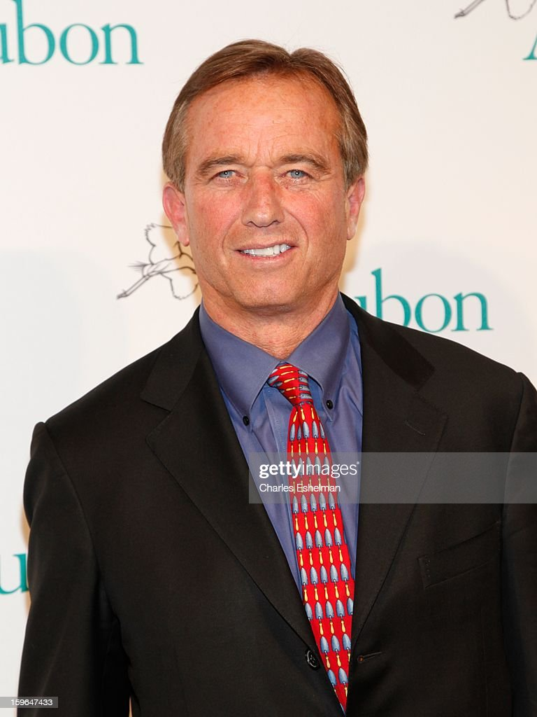 Robert F. Kennedy Jr. attends the 2013 National Audubon Society Gala dinner on January 17, 2013 at The Plaza Hotel in New York, City.