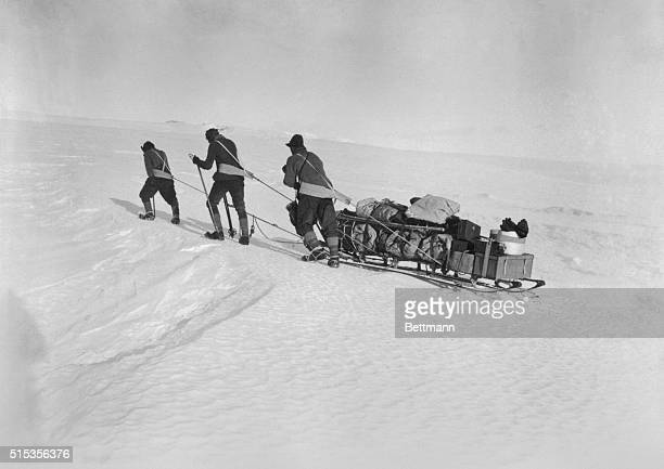 Robert F Scott and two of his four companions set out for the South Pole pulling a sled The expedition found Roald Amundsen had arrived a month early...