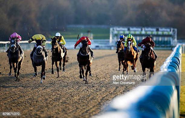 Robert Havlin riding Dream Love win The Betway Maiden Stakes at Lingfield Park on December14 2016 in Lingfield England