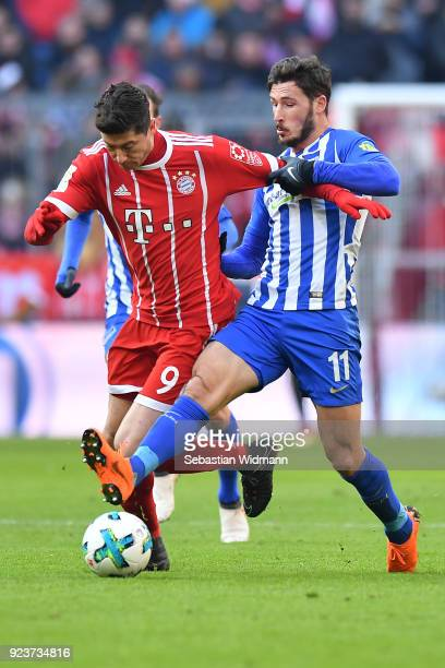 Robert Lewandowski of Bayern Muenchen fights for the ball with Mathew Leckie of Berlin during the Bundesliga match between FC Bayern Muenchen and...