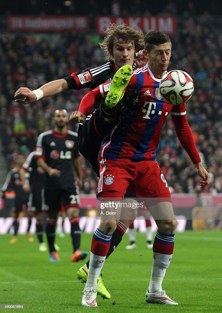 Robert Lewandowski (R) of Bayern Muenchen fights for the ball with Tin Jedvaj of Bayer Leverkusen during the Bundesliga match between FC Bayern Muenchen and Bayer 04 Leverkusen at Allianz Arena on December 6, 2014 in Munich, Germany.