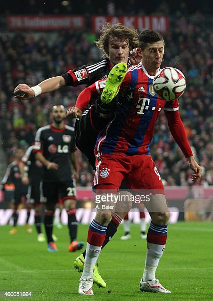Robert Lewandowski of Bayern Muenchen fights for the ball with Tin Jedvaj of Bayer Leverkusen during the Bundesliga match between FC Bayern Muenchen...