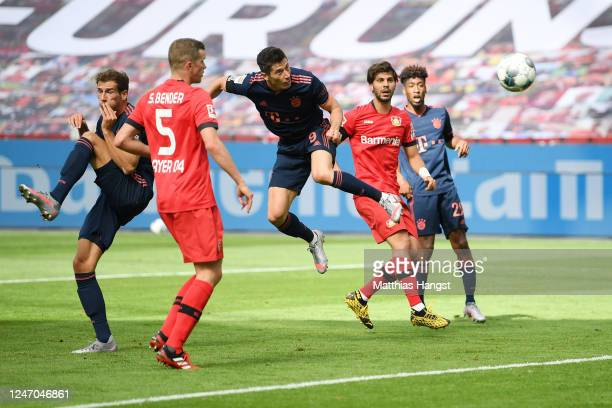 Robert Lewandowski of Muenchen scores his team's fourth goal during the Bundesliga match between Bayer 04 Leverkusen and FC Bayern Muenchen at...