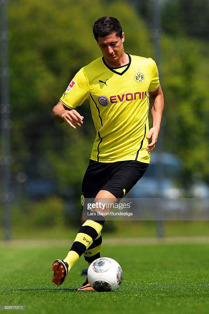 Lewandowski 2013