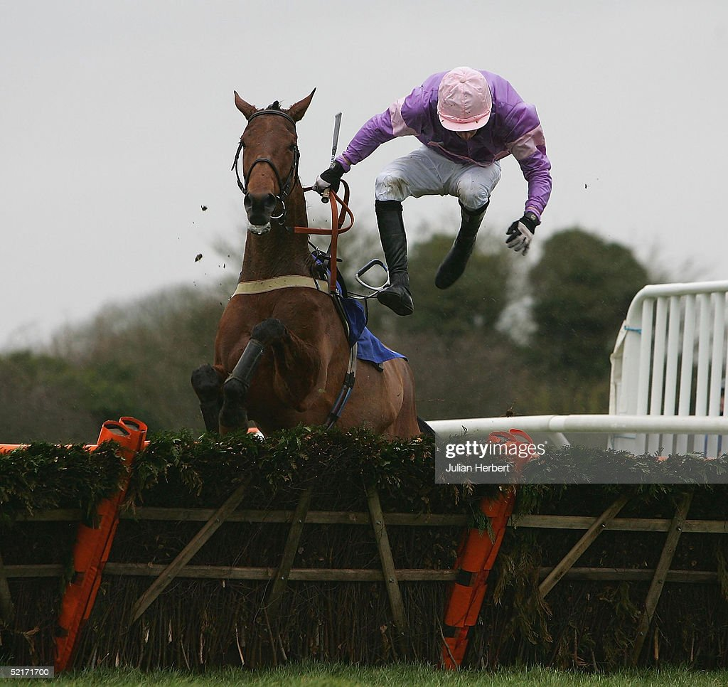 The coralpoker.com EBF Mares Only Hurdle Race : News Photo