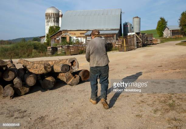 Robert Marble walks past hardwood logs ready for cutting on his converted dairy farm in Charlotte Vermont September 26 2017 Marble is a firewood...