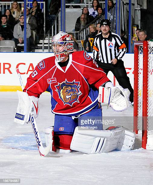Robert Mayer of the Hamilton Bulldogs covers the net against the Toronto Marlies during AHL game action November 17 2012 at Ricoh Coliseum in Toronto...