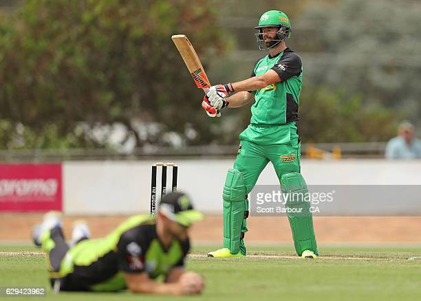 Robert Quiney of the Stars reacts as he is out caught by Aiden Blizzard of the Thunder during the Twenty20 Border Bash match between the Melbourne...
