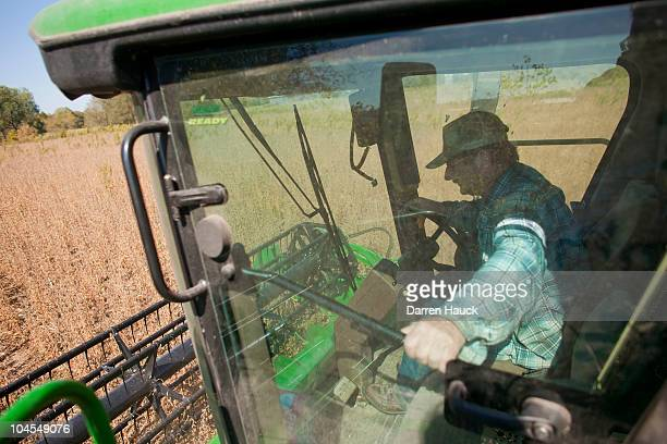 Robert Roden harvests a soy bean field on the RobNCin farm on September 29 2010 in West Bend Wisconsin The farm has roughly 400 head of cattle and...