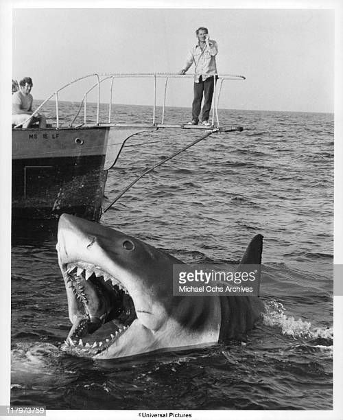 Robert Shaw stands over Jaws in a scene from the film 'Jaws' 1975