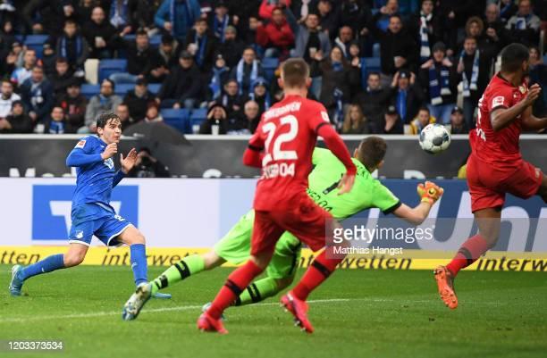 Robert Skov of TSG 1899 Hoffenheim scores his sides second goal during the Bundesliga match between TSG 1899 Hoffenheim and Bayer 04 Leverkusen at...
