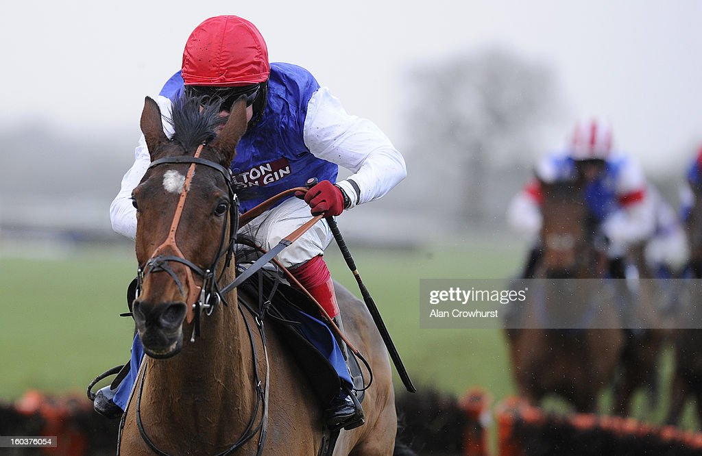 Robert Thornton riding Heronshaw clear the last to win The Plymouth Carvery Maiden Hurdle Race at Ludlow racecourse on January 30, 2013 in Ludlow, England.