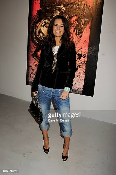 Roberta Armani attends a private viewing of Richard Hambleton New York The Godfather Of Street Art at The Dairy on November 18 2010 in London England