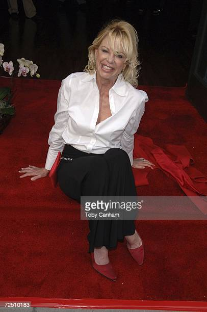 Roberta Leighton poses at 'A Very Hip luncheon For The Women Of Daytime' held at the Colors on Bedford restaurant November 11 2006 in Beverly HIlls...