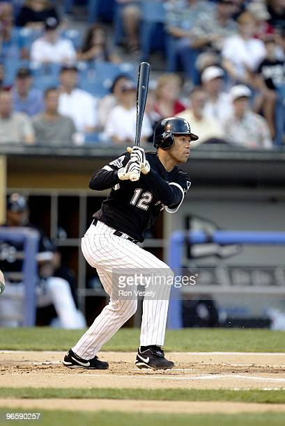 Roberto Alomar of the Chicago White Sox bats during an MLB game at Comiskey Park in Chicago Illinois on July 25 2003