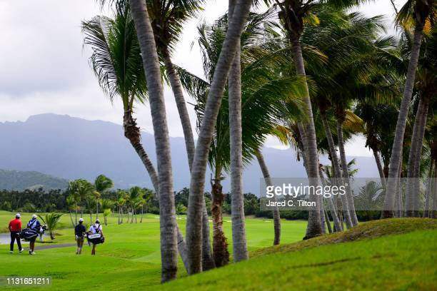 Roberto Diaz of Mexico and Roger Sloan of Canada walk the second fairway during the third round of the Puerto Rico Open at Coco Beach Golf and...