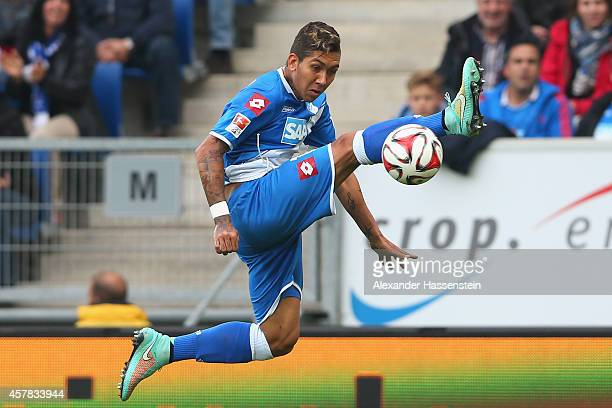 Roberto Firmino of Hoffenheim battles for the ball during the Bundesliga match between TSV 1899 Hoffenheim and SC Paderborn 07 at Wirsol...