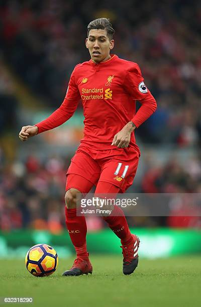 Roberto Firmino of Liverpool in action during the Premier League match between Liverpool and Swansea City at Anfield on January 21 2017 in Liverpool...
